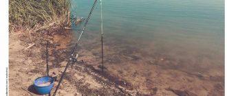 Рыбалка в мае на Нижней Волге
