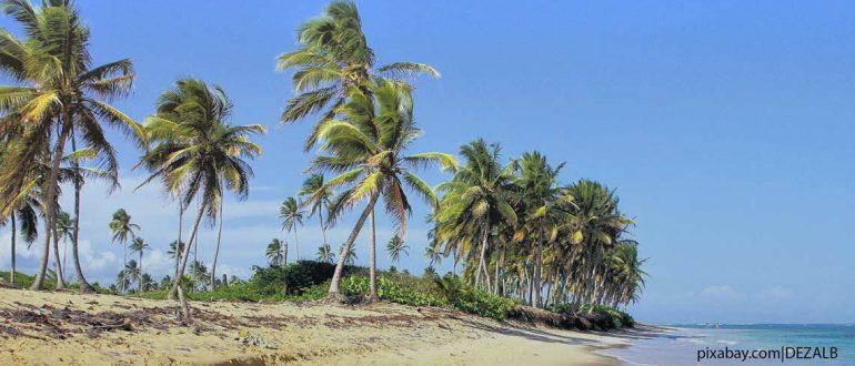 Доминиканская республика или Доминикана особенности посещения страны