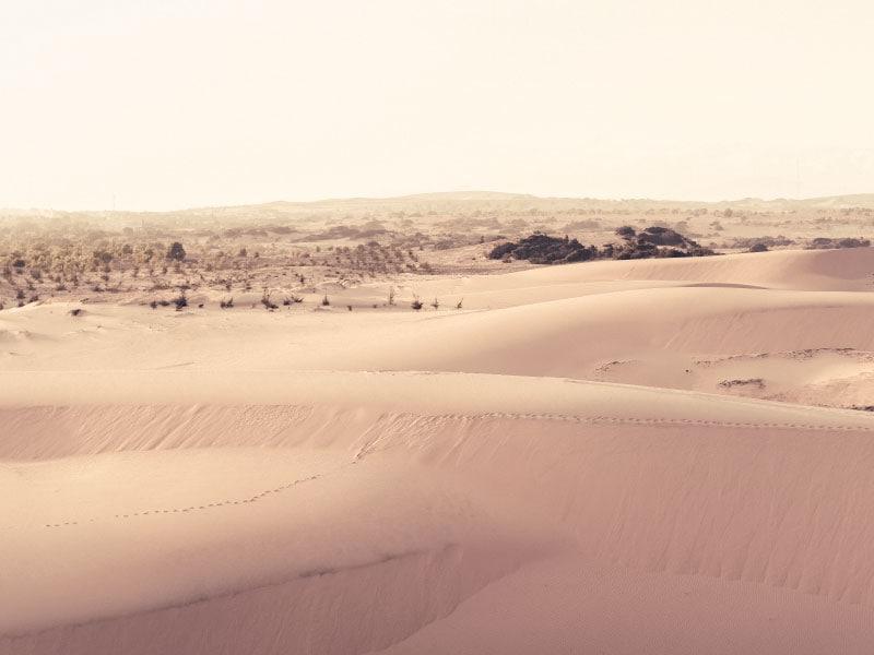 Песчаные дюны, Муйне