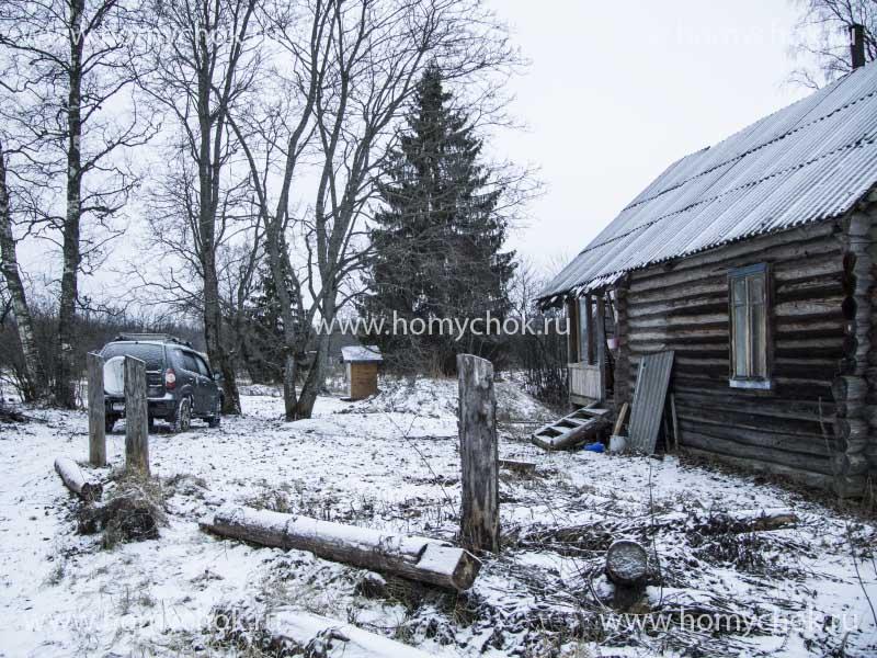 Деревня Букино