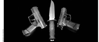 Закон об оружии 2018