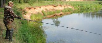 Как выбрать поплавочную удочку