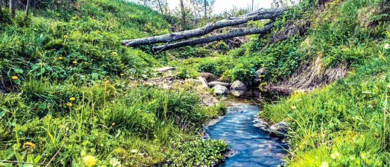 Как выбрать походный фильтр для воды